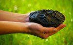 Грязелечение: чем помогут лечебные грязи?